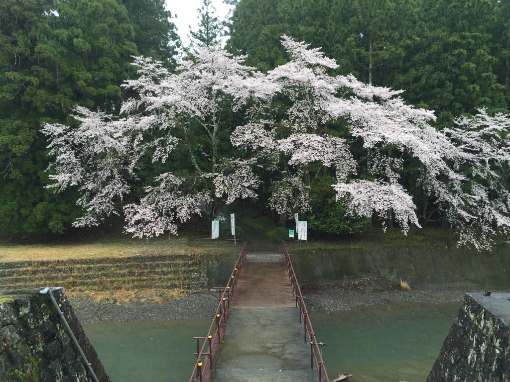 熊野本宮大社旧社地