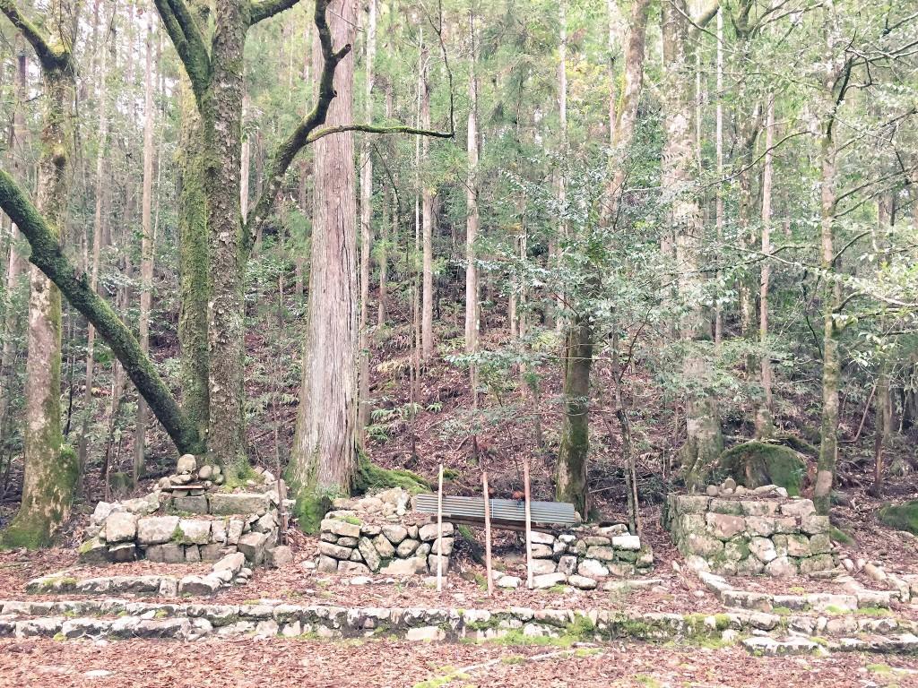 畝畑の高倉神社